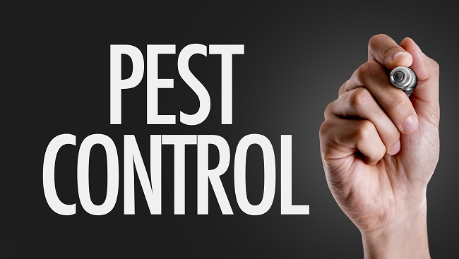 5 Questions To Ask Your Prospective Pest Control Company